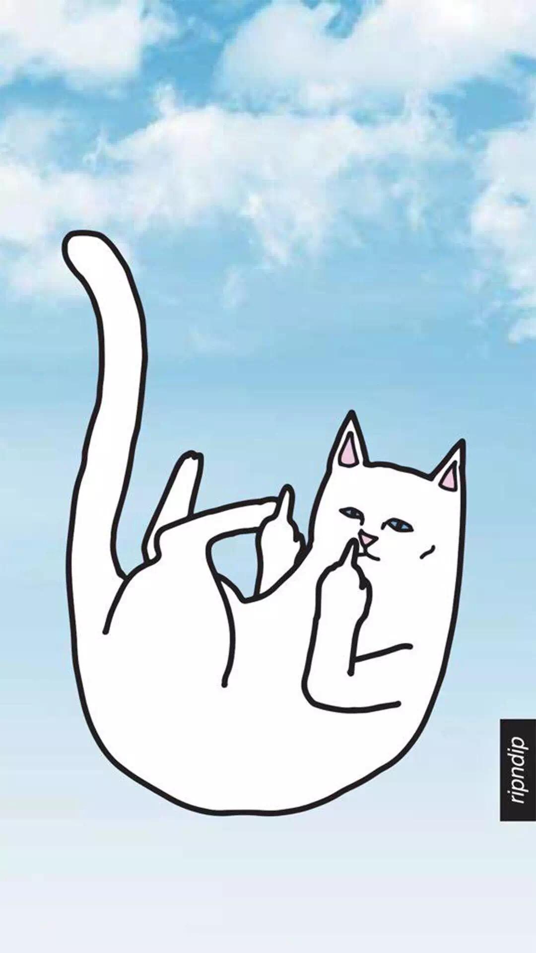 表情猫 手绘 中指