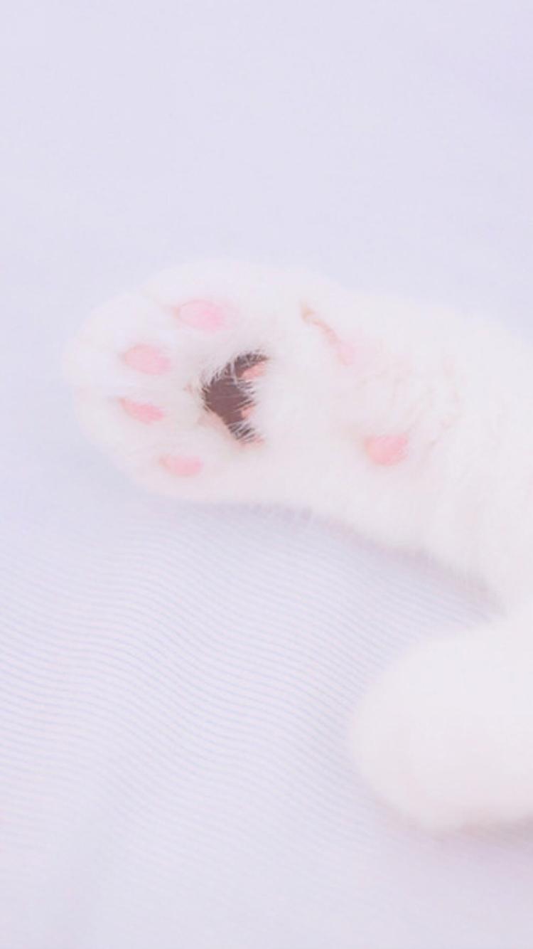 被动物爪子划伤