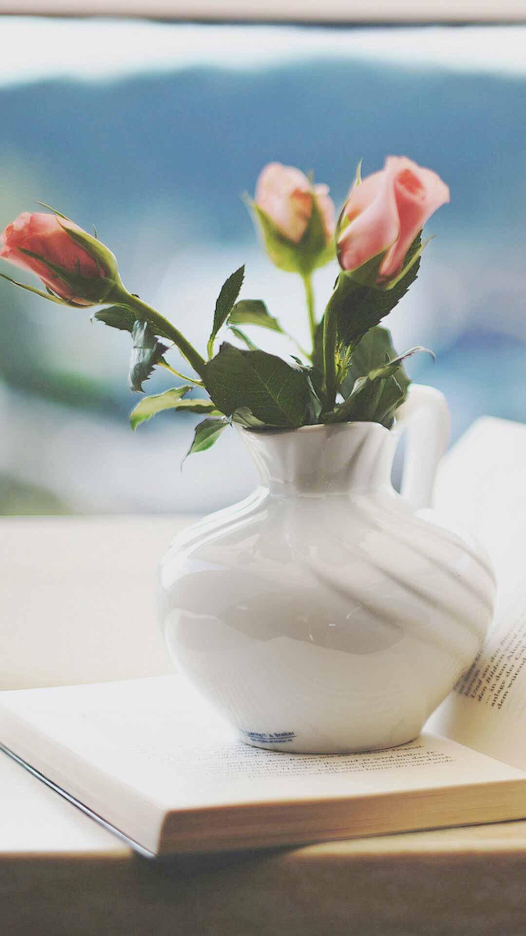 鲜花 唯美 简约 苹果手机高清壁纸 1080x1920 爱思助手图片