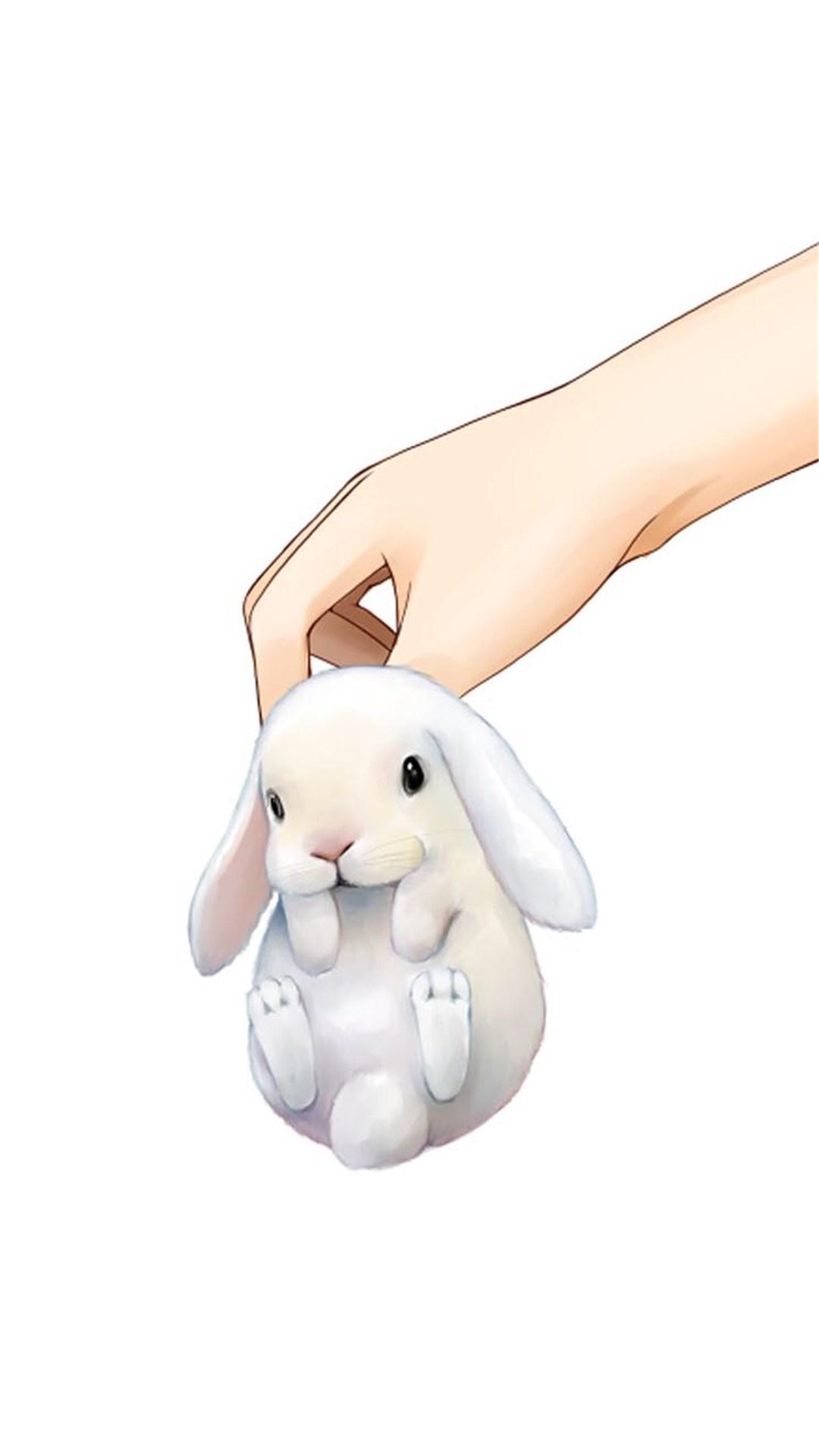 动物 萌宠 可爱 手 兔子 苹果手机高清壁纸 1080x1920