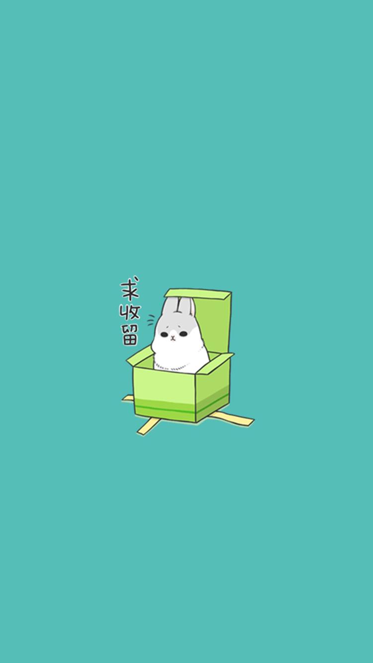 超萌可爱小猫咪 苹果手机高清壁纸 750x1334_爱思助手