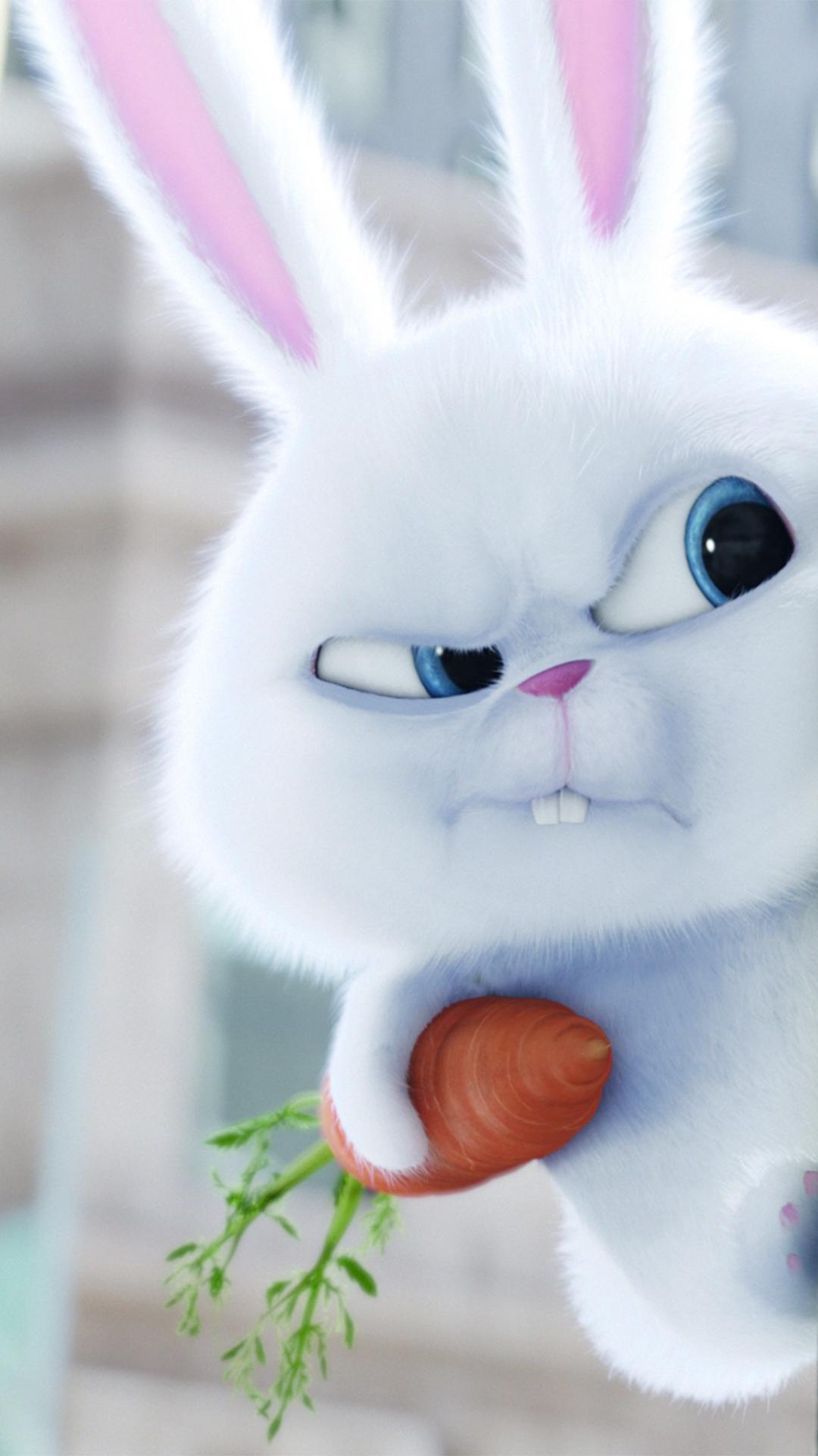 爱宠大机密 兔子 萝卜 苹果手机高清壁纸 1080x1920