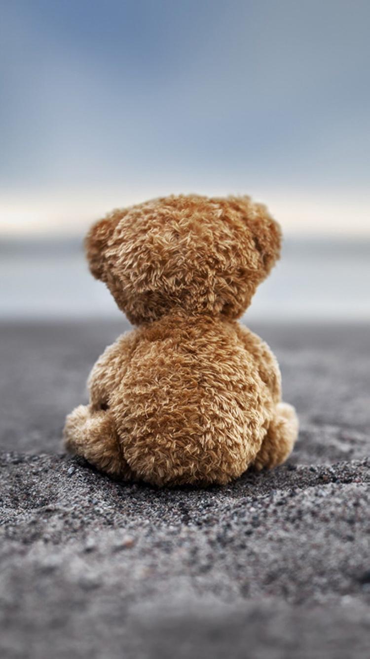 小熊 棕熊 棕色 背影
