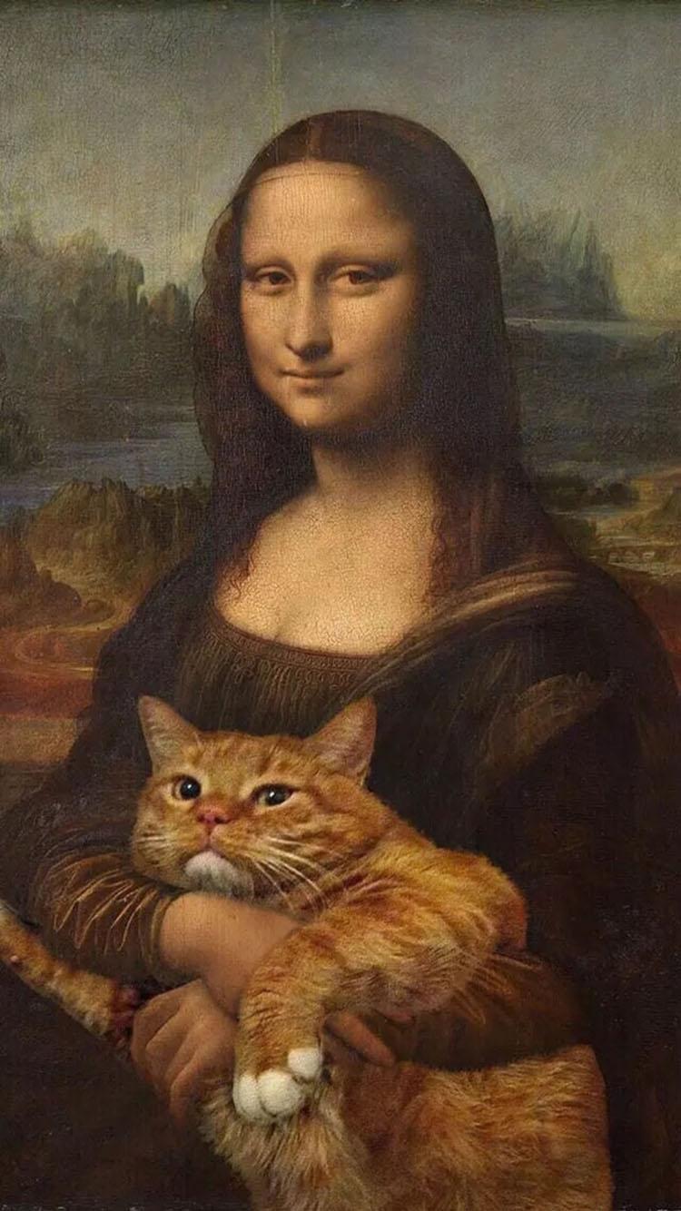 蒙娜丽莎的微笑 抱着大黄猫
