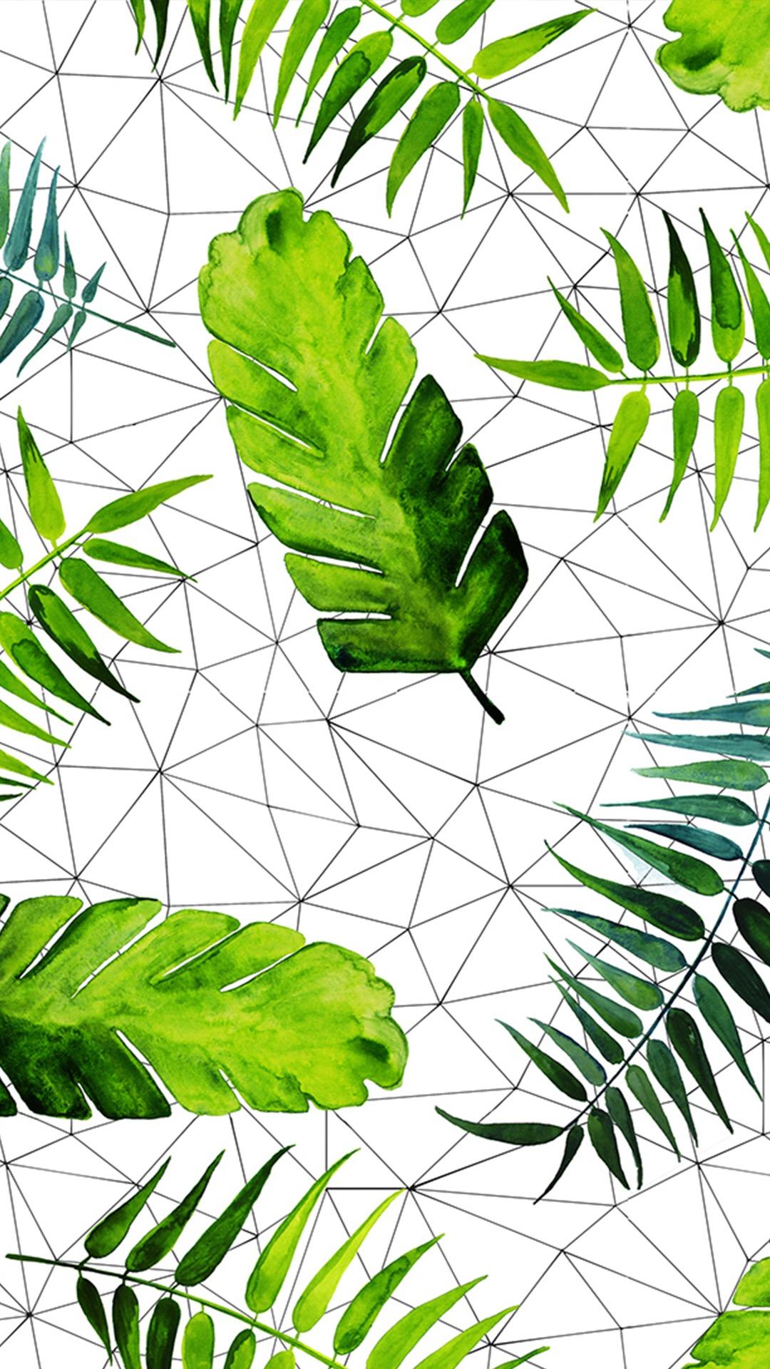 叶子 芭蕉叶 植物 绿色 手绘 水彩