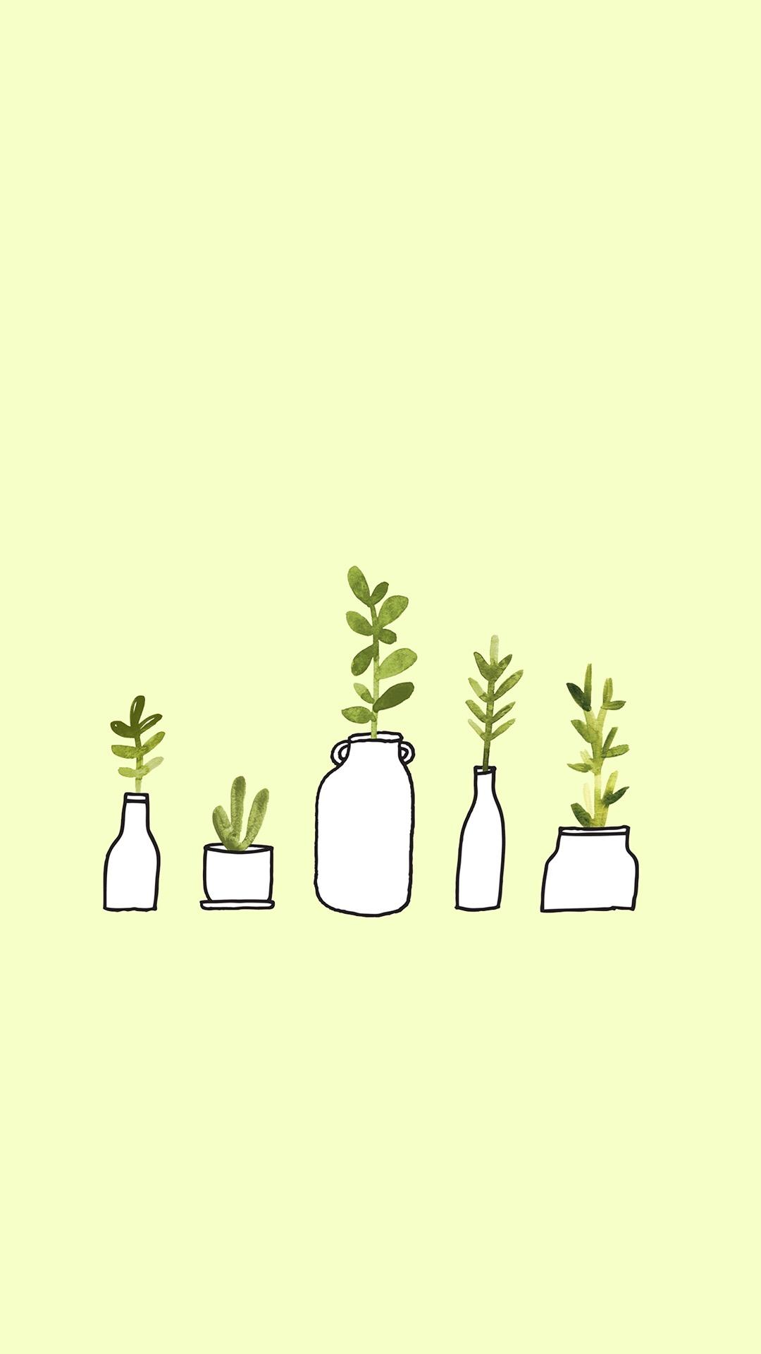 盆栽 手绘 插画 叶子 绿色