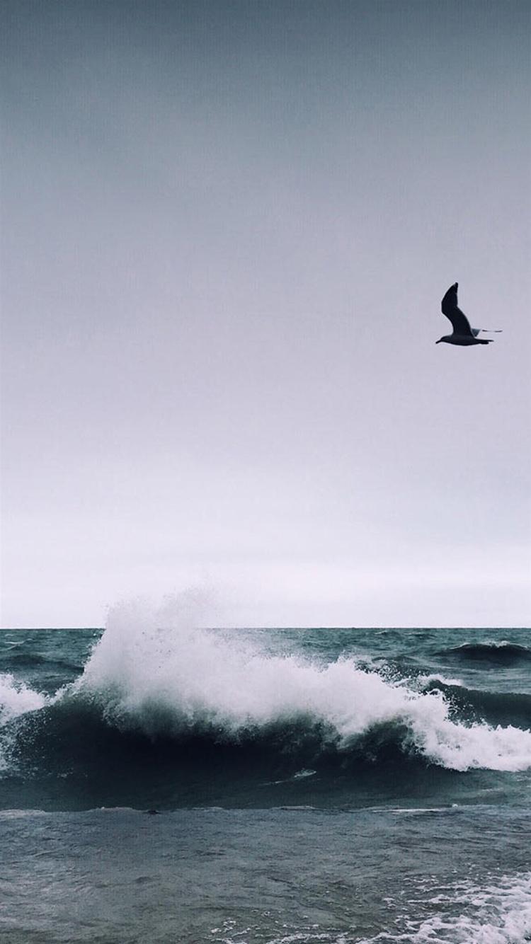海浪 大海 海水 蓝天 白云 苹果手机高清壁纸 750x