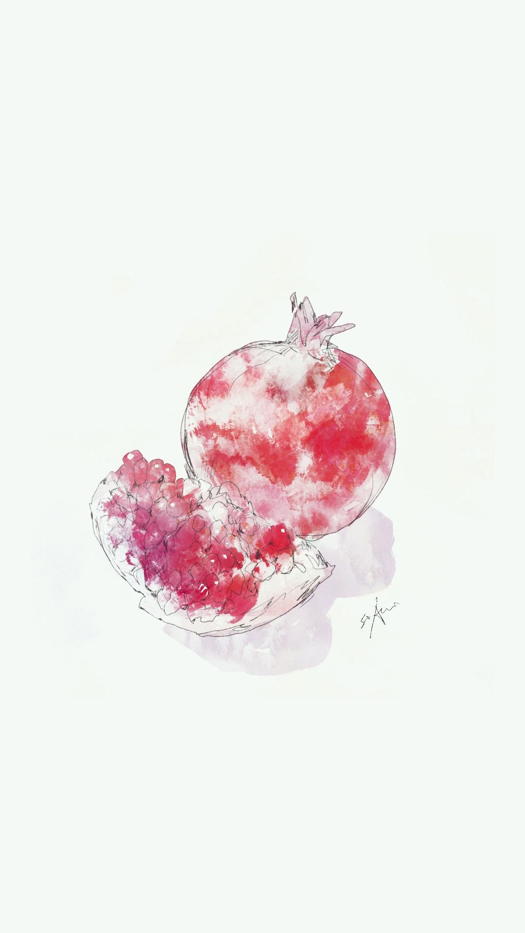 石榴 红色 白色 水果 手绘 苹果手机高清壁纸 1080x