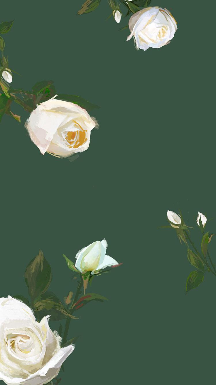 情人节主题 绿色 手绘玫瑰壁纸 苹果手机高清壁纸 750