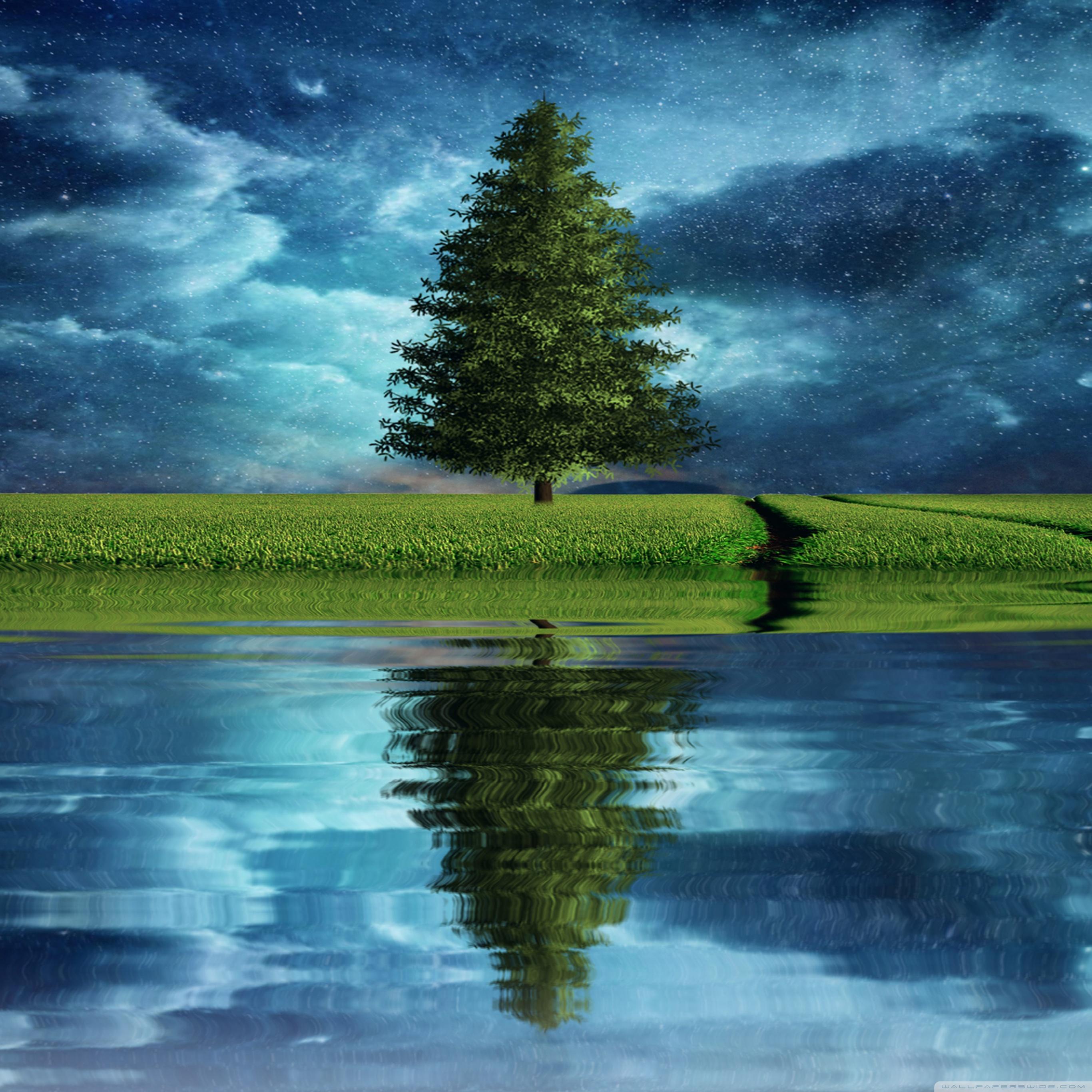 树木 绿色 星空 蓝天 苹果手机高清壁纸 2732x2732