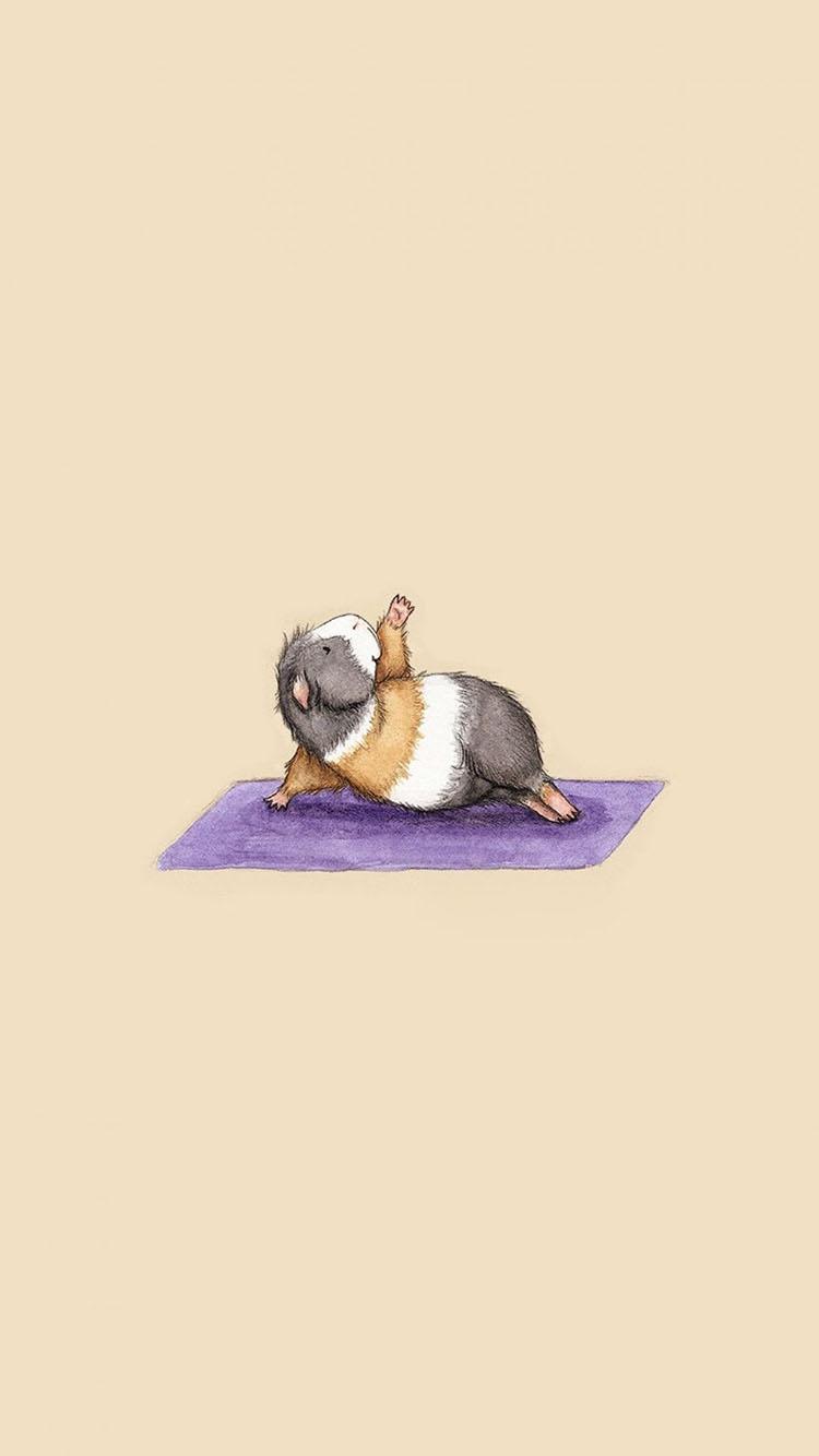 萌宠 动物 仓鼠 可爱 苹果手机高清壁纸 750x1334