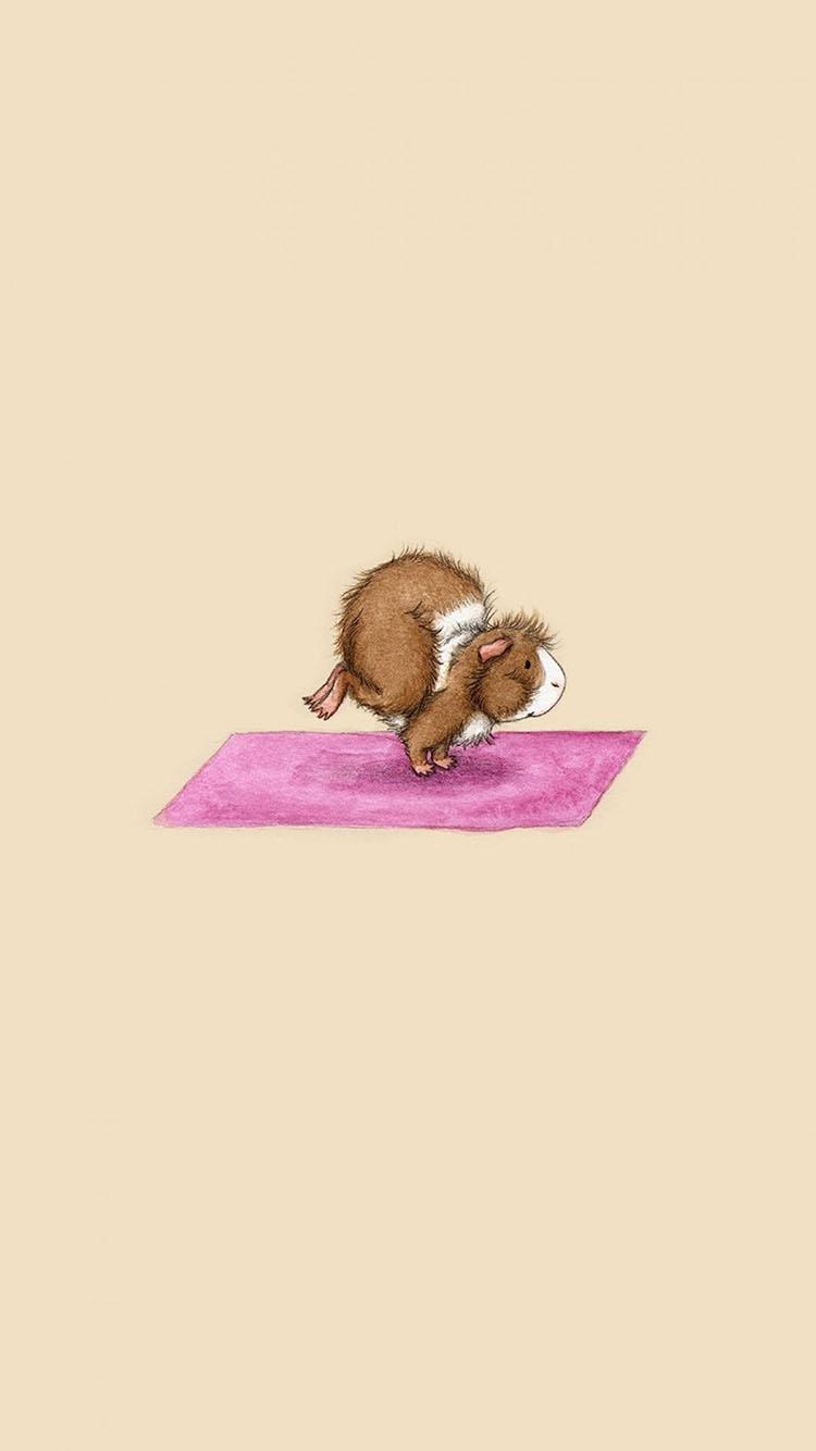 动物 仓鼠 瑜伽 可爱 有趣 苹果手机高清壁纸 750x