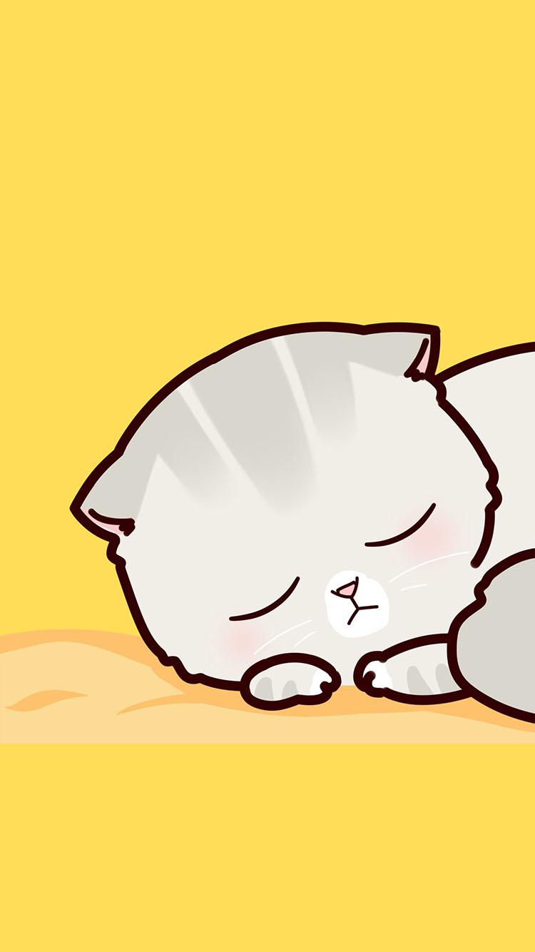 黄色背景 卡通小猫睡觉 萌萌哒