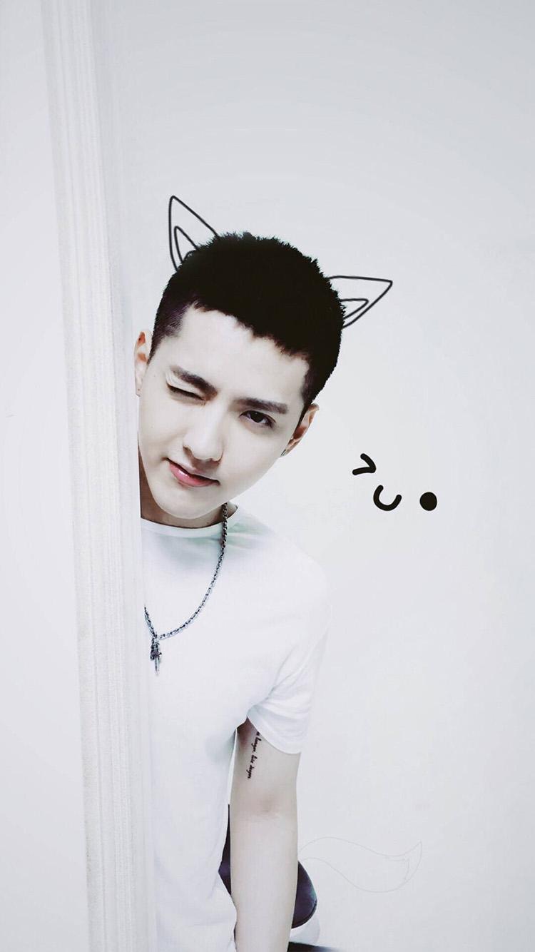 歌手吴亦凡 帅气 猫咪耳朵 苹果手机高清壁纸 750x