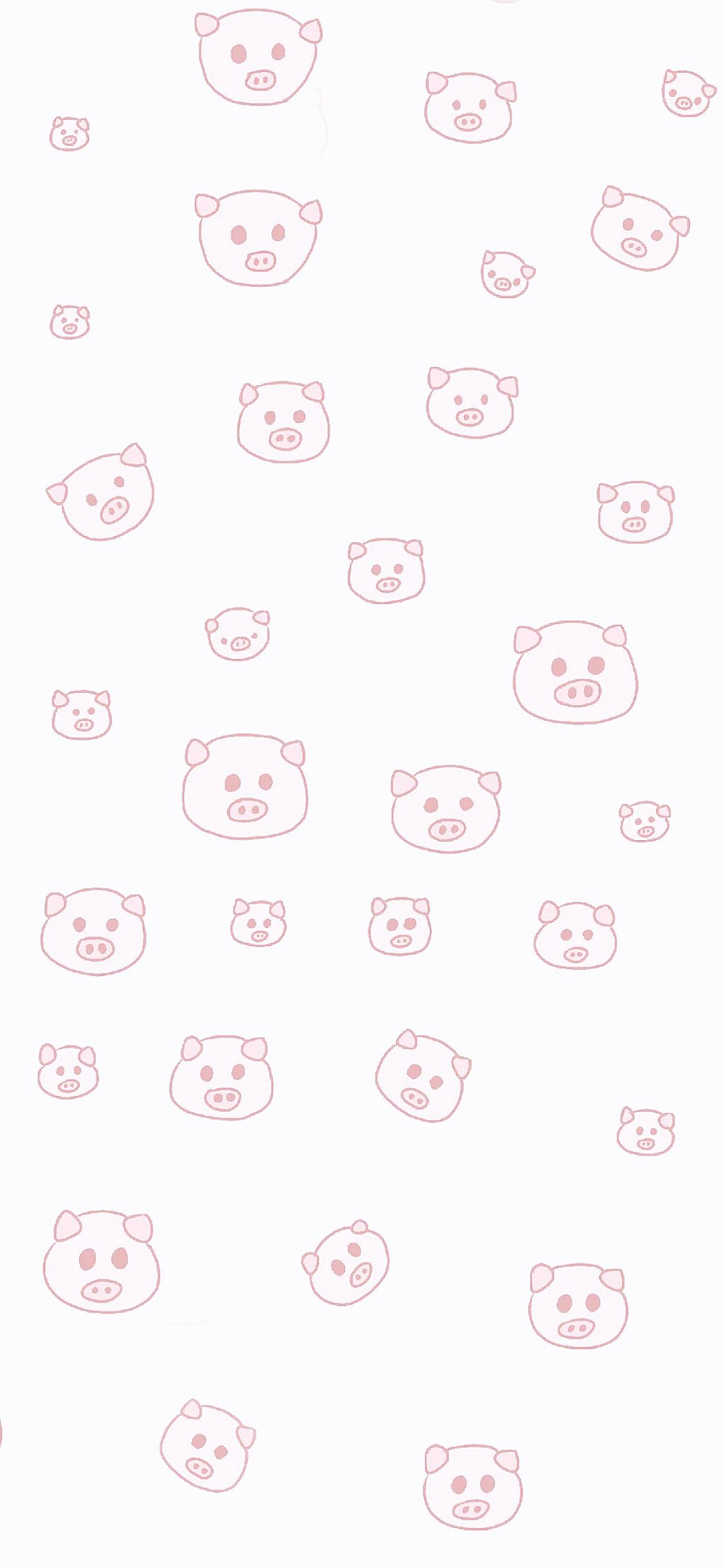 手机背景猪头可爱