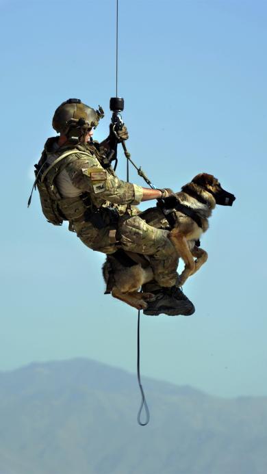 狗 救援 德国牧羊犬  直升机 提升机