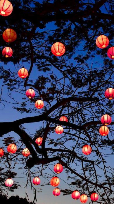 黄昏 灯笼 亮 红色 过年 喜庆 树