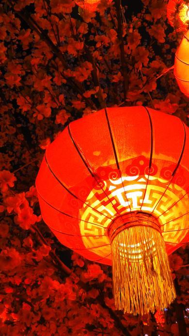 灯笼 新年 红色 喜庆 发光