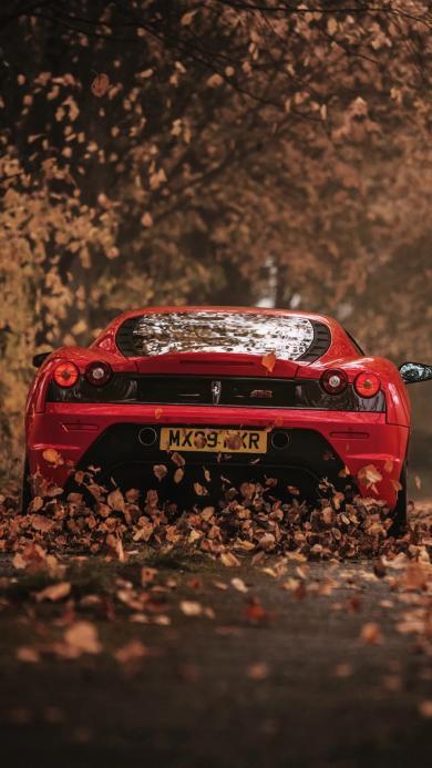 法拉利 红色 跑车 落叶 超跑 车尾