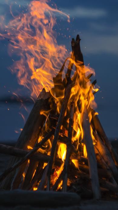 篝火 火焰 木材 海边