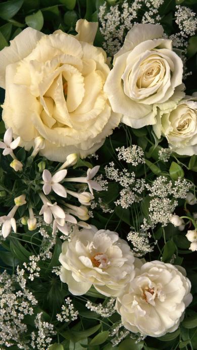 鲜花 白色 浪漫 花艺 叶子