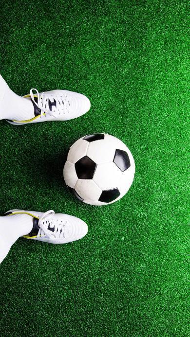 足球 体育 球鞋 草地