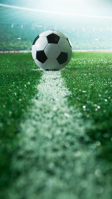 足球特写 足球场 草地