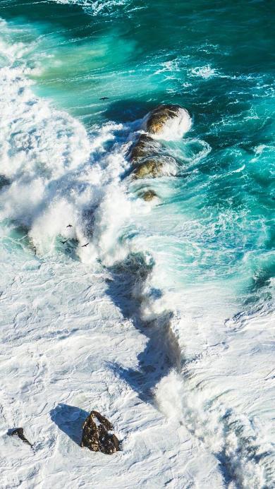 海浪 大海 飞鸟 海岸