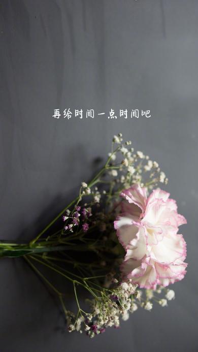 再给一点时间吧 康乃馨 满天星 花束