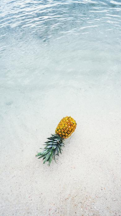 菠萝 海岸边 海浪 海水