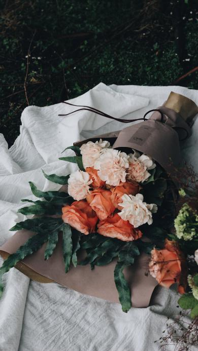 花束 植物 绿叶 玫瑰 盛开