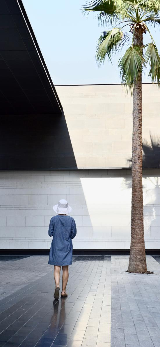 椰树 背影 孤寂 建筑