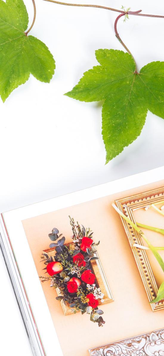 杂志 简约 静物 树叶