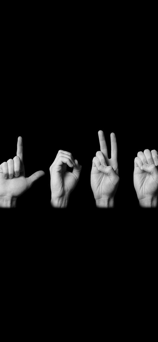 手势 黑白 love