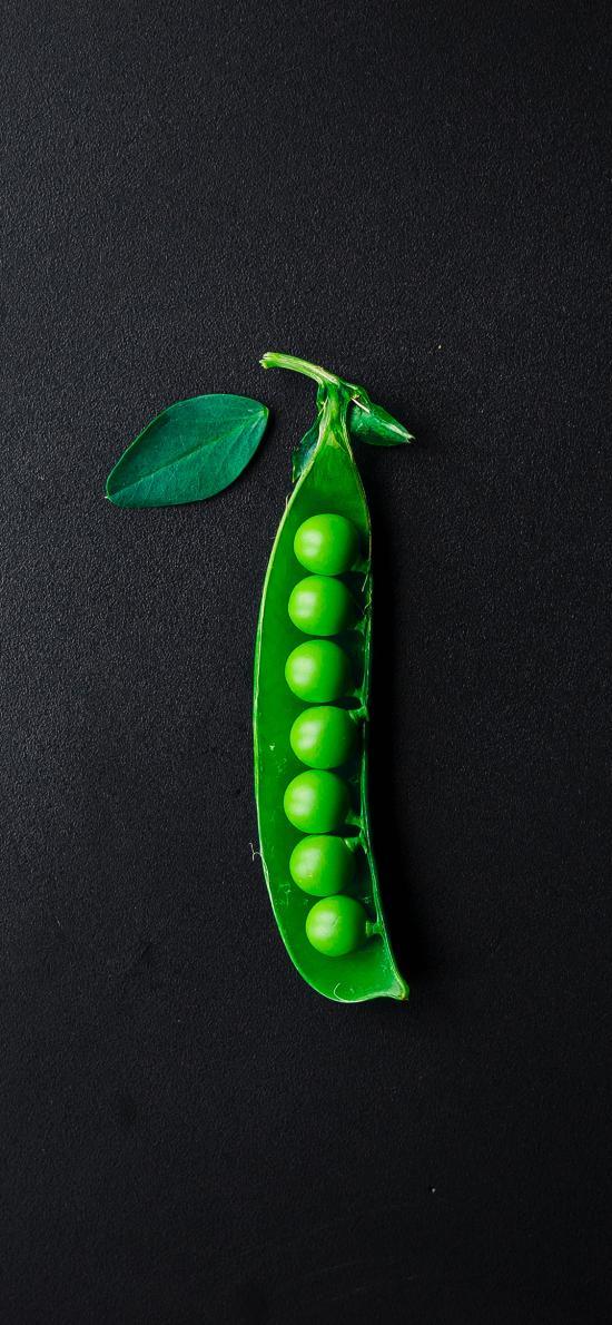 青豆 豆子 青綠 食材