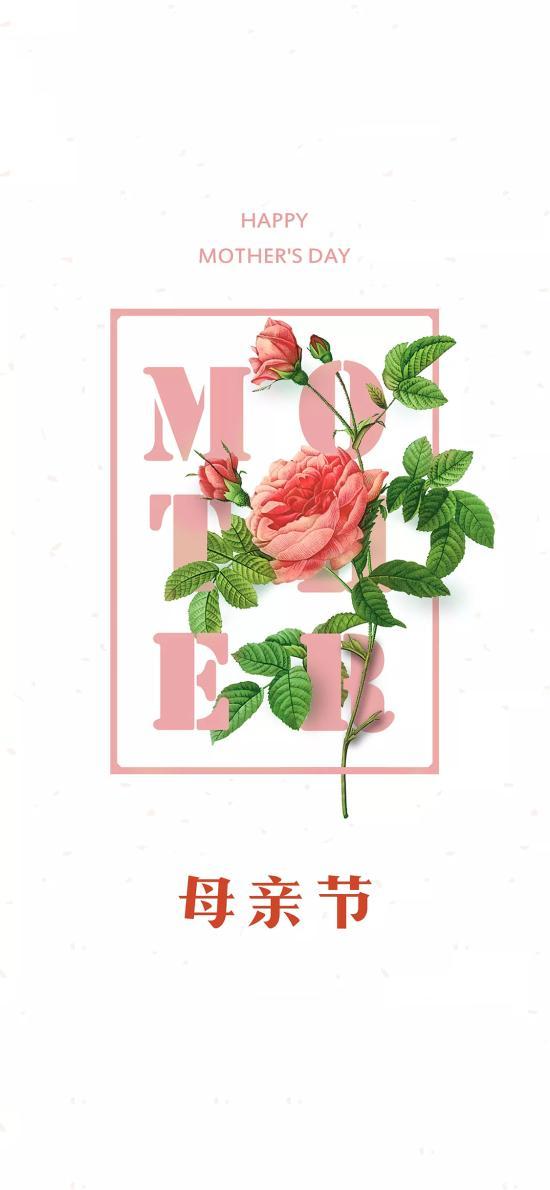 母親節 媽媽 鮮花