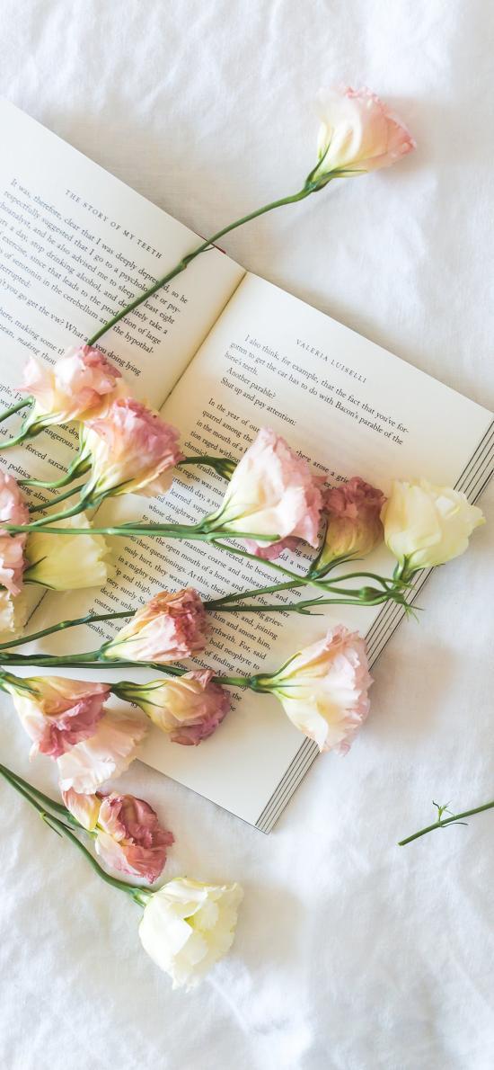 靜物 鮮花 書本 書籍