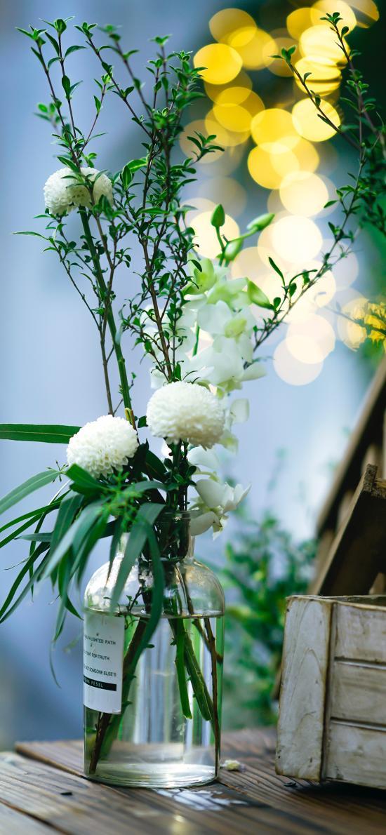 繡球花 花瓶 枝葉 插花