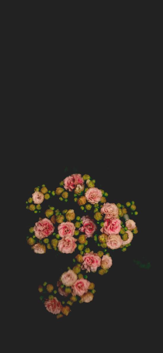 鮮花 盛開 俯拍 盛開