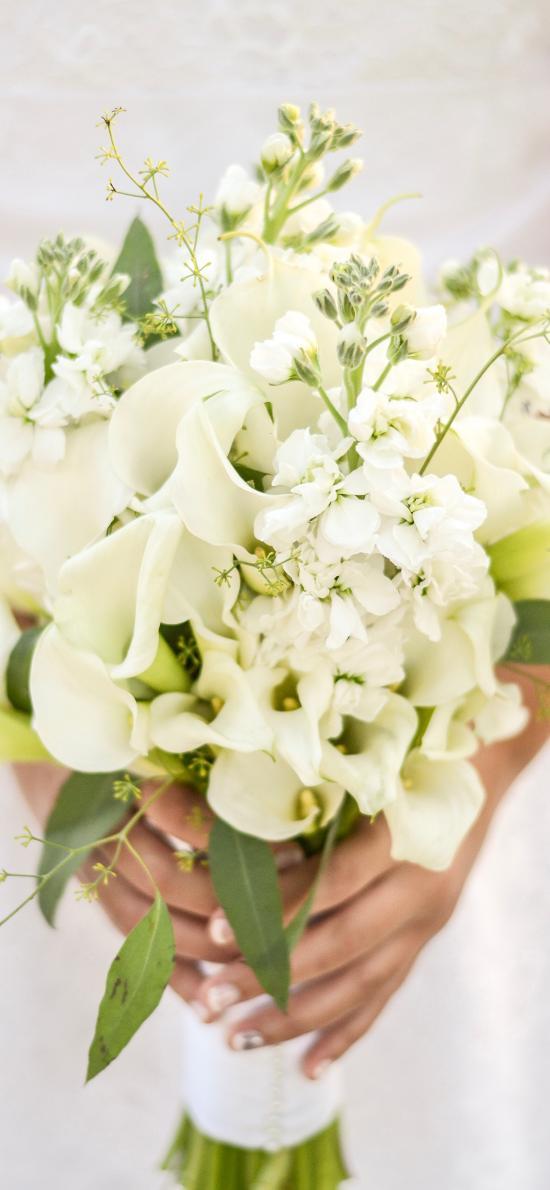 鮮花 花束 馬蹄蓮 潔白 清新