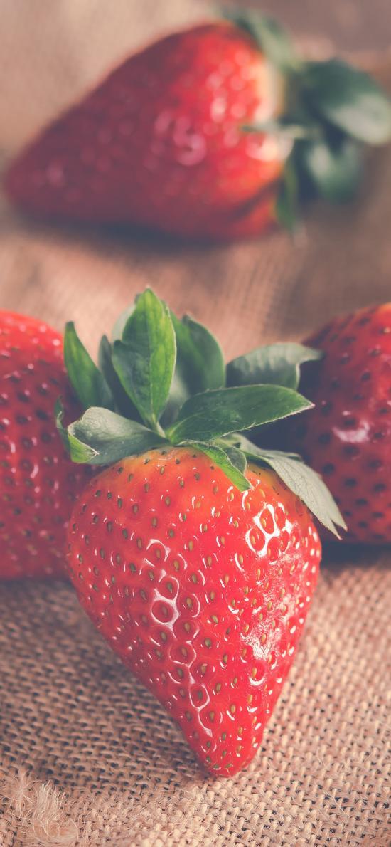 草莓 水果 新鮮 葉子