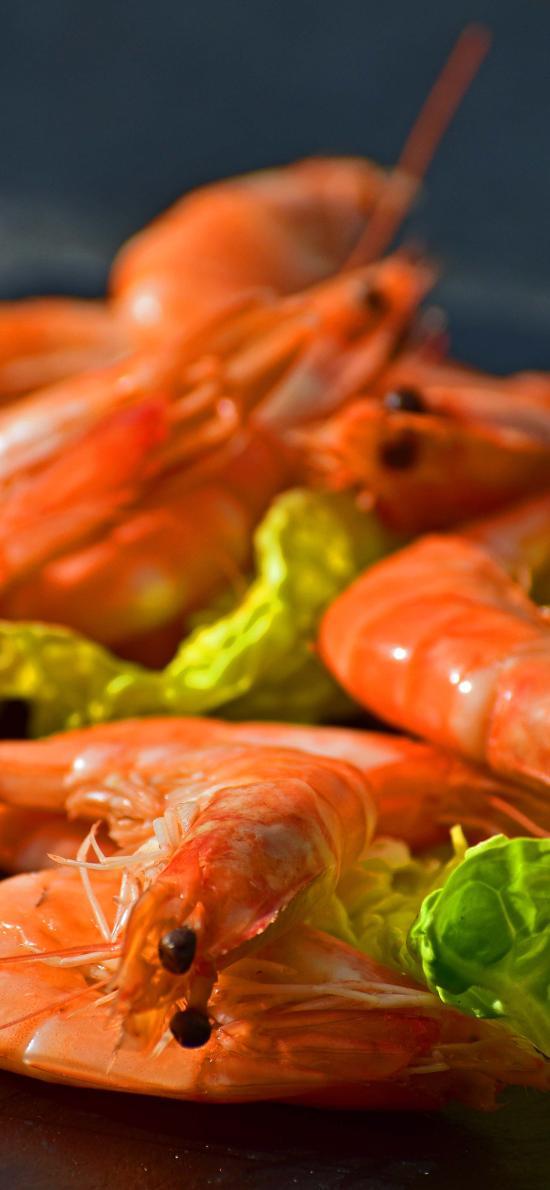 鮮蝦 海鮮 料理 食物