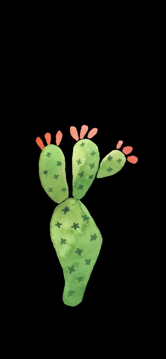 仙人掌 插畫 植被 黑色