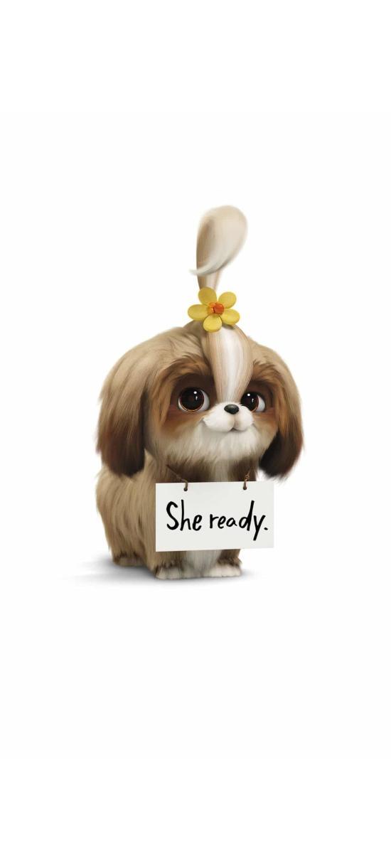 愛寵大機密2 電影 動畫 狗