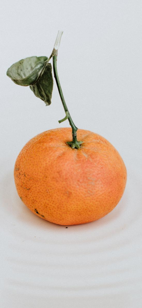 水果 橘子 柑橘 砂糖橘