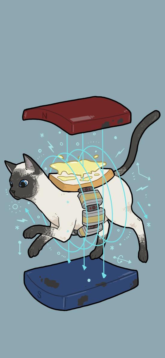 貓 插畫 線條 藍色