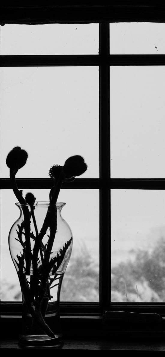 窗戶 窗臺 插花 黑白 意境