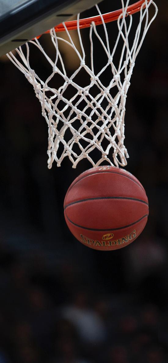 籃球 球框 球網 籃球場