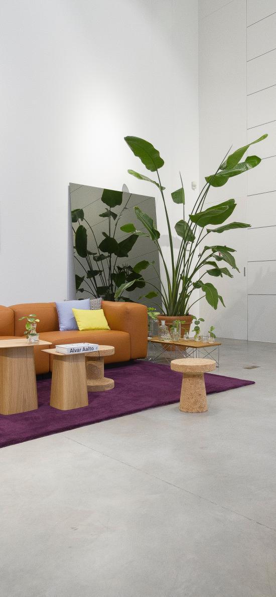 家居 家具 綠植 盆栽