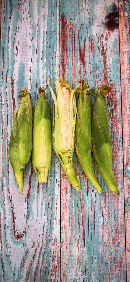 玉米 蔬菜 新鮮 皮衣